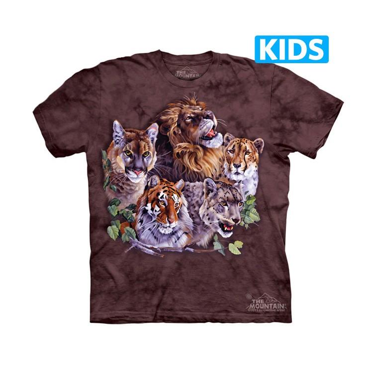 Camiseta - The Mountain - Big Five (infantil)