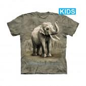 71a338d6b Camiseta - The Mountain - Asian Elephants (infantil)